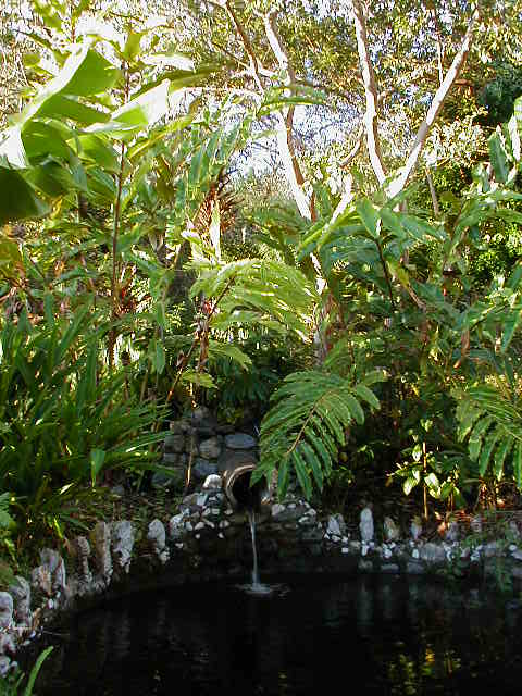 Recreational area pond 3